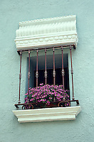 Flowers on a window sill in Cuernavaca, Morelos, Mexico