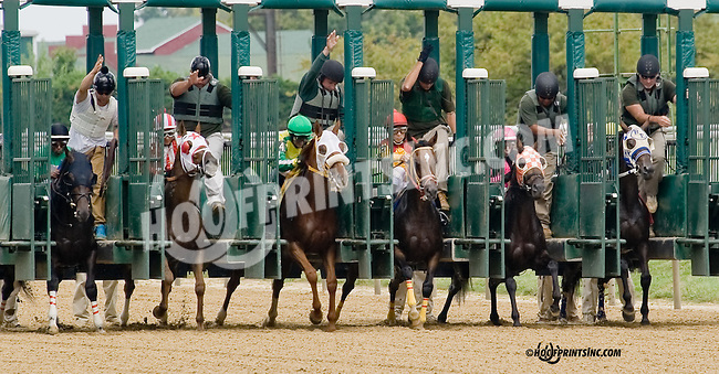 Hobson B winning at Delaware Park on 8/30/14 , Champion Sound #5,