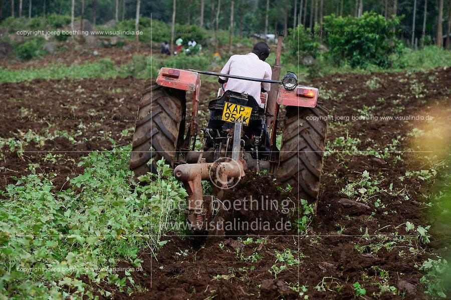 KENYA, County Kakamega, village Shitaho, farmer till soil with Massey Ferguson tractor / KENIA, Bauern pfluegen Feld mit Traktor