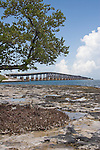 Low tide exposes the limestone shelf, formed from coral, calcium carbonate and other minerals.
