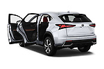 Car images of 2019 Lexus NX 300h 5 Door SUV Doors