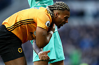 1st March 2020; Tottenham Hotspur Stadium, London, England; English Premier League Football, Tottenham Hotspur versus Wolverhampton Wanderers; Adama Traore of Wolverhampton Wanderers suffers a shoulder injury