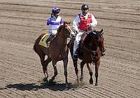 April 7, 2012. I'll Have Another and Mario Gutierrez win the Santa Anita Derby(GI) at Santa Anita Park in Arcadia, CA.