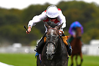 Winner of The Lester Brunt Wealth Management HandicapPast master ridden by Ryan moore and trained by Henry Candy during the Bathwick Tyres & EBF Race Day at Salisbury Racecourse on 6th September 2018