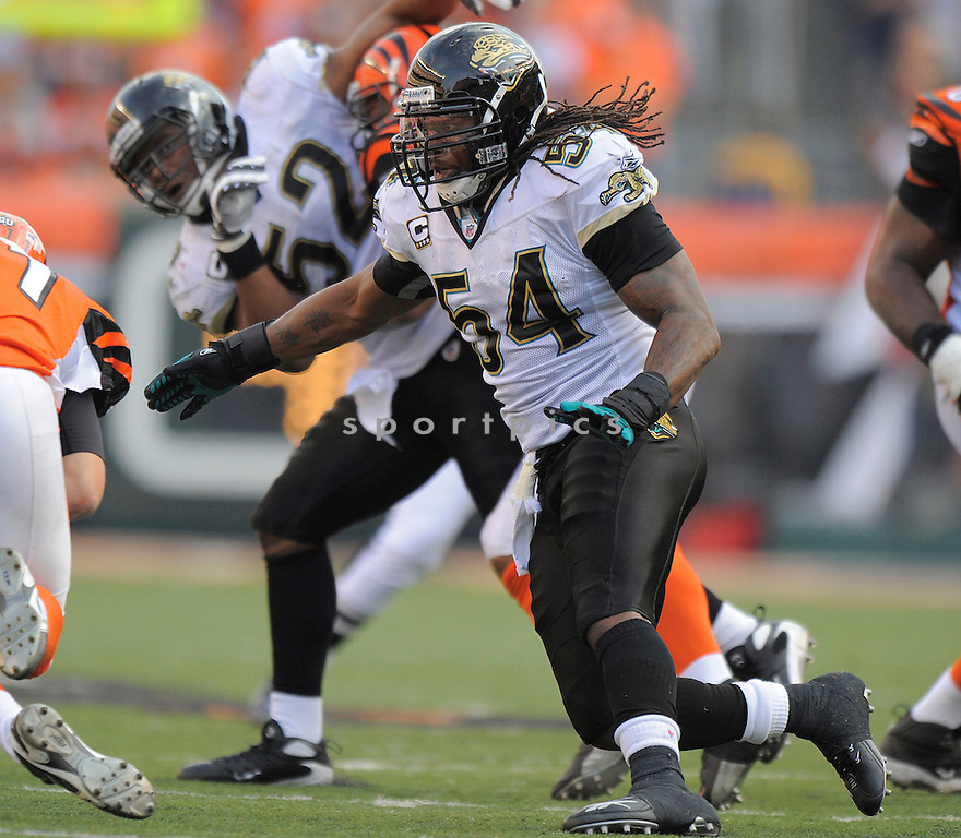 MIKE PETERSON, of the Jacksonville Jaguars, in action against the Cincinnati Bengals during the Bengals game in Cincinnati, OH on Novmeber 12, 2008. ..Bengals win 21-19
