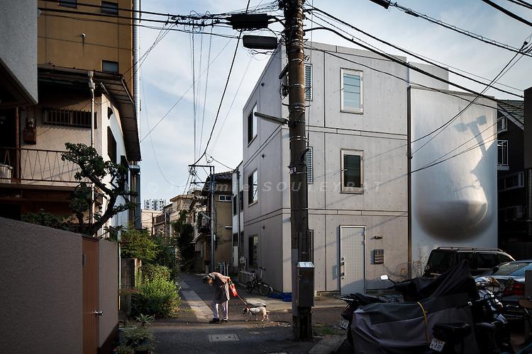 Tokyo, August 30 2010 - SH House by N.A.P.