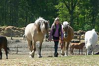 Mädchen beim Reitunterricht auf Ponyhof, Mädchen holt Reitpony am Führstrick von der Weide, Reiten, Reiterhof, Gestüt