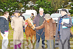 Pat Byrne Ballyheigue bog pony wins the reserve supreme champion at the Kerry Bog Pony show in the Red Fox Inn, Glenbeigh on Saturday l-r: Triona Casey, Pat Byrne, John Casey, April Merveldt and Carol Bradley Ballyheigue.