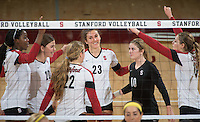 STANFORD, CA - The Stanford Cardinal defeats the UCLA Bruins in four sets at Maples Pavilion on Friday, November 1, 2013.