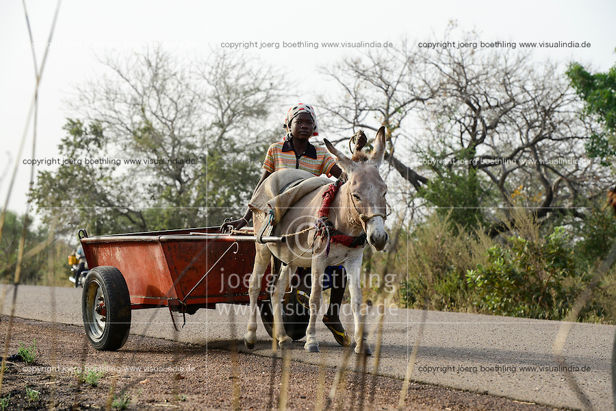 BURKINA FASO , Fada N´Gourma, rural transport with donkey wagon / laendlicher Transport mit Eselskarren