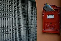 Hey Mr. Postman