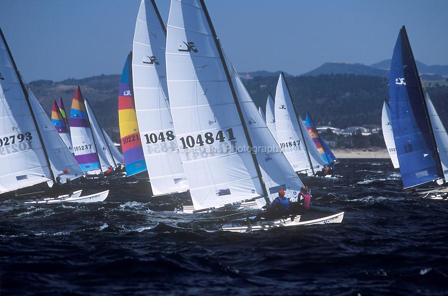 Hobie Cat Sailboats racing on Monterey Bay, California.