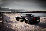 FORD MOTOR COMPANY MUSTANG GT 5.0