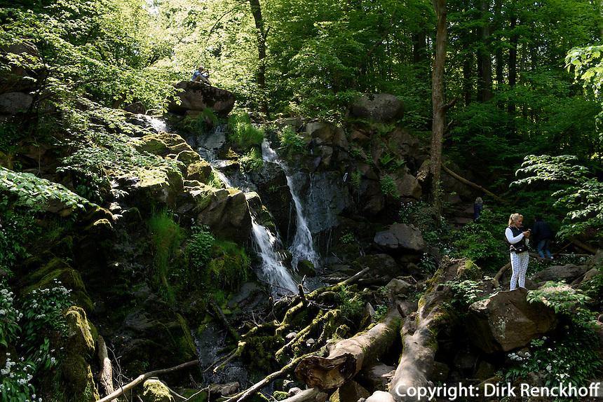 Wasserfall im D&oslash;ndal (Donnertal) auf der Insel Bornholm, D&auml;nemark, Europa<br /> waterfall in D&oslash;ndal, Isle of Bornholm Denmark