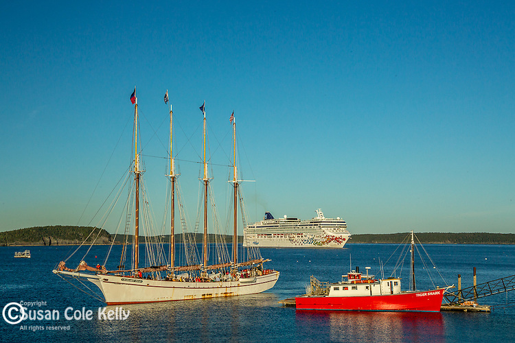 The Margaret Todd and cruise ships on Frenchman Bay in Bar Harbor, Maine, USA