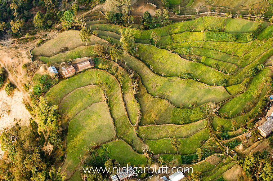 Terraced fields from the air around Pokhara. Foothills of the Himalayas, Nepal.