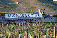 vineyard hut domaine m chapoutier hermitage rhone france