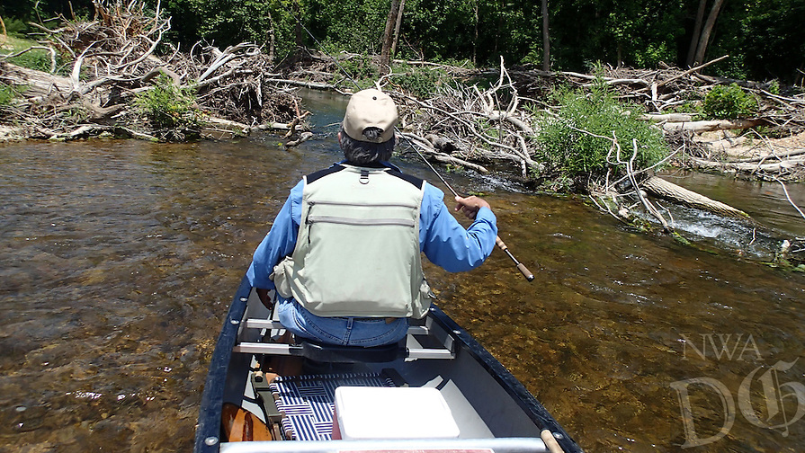 NWA Democrat-Gazette/FLIP PUTTHOFF <br /> Parts of Flat Creek are clogged with timber     June 17, 2016        that creates a challenge for paddlers.