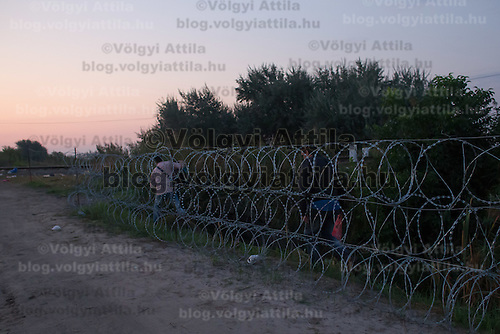 Illegal migrants pass an opening at the razor wire fence on the border between Hungary and Serbia near Roszke (about 174 km South of capital city Budapest), Hungary on September 01, 2015. ATTILA VOLGYI