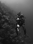 Qixingyan ('Seven Star Rock'), Taiwan -- Diver at a steep reef wall.