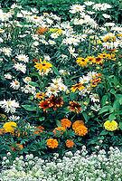 HS47-013a  Flower Garden
