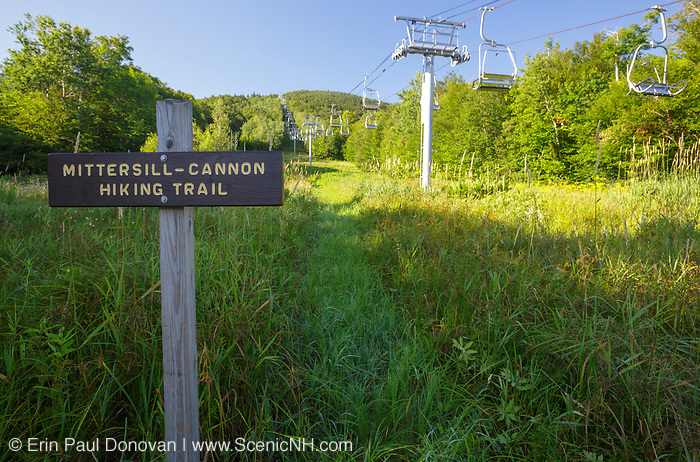 The start of the Mittersill-Cannon Hiking Trail on Mittersill Mountain in Franconia, New Hampshire during the summer months.