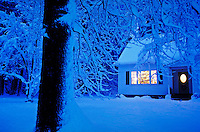 Home in winter evening snow with lights on and Christmas tree in window.