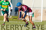 Kerry in action against Aoife Doherty  Westmeath in the 2019 Camogie League Division 2 at John Mitchells GAA grounds in Tralee, on Sunday.