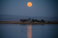 October Moonrise over the Woodward Reservoir in Oakdale