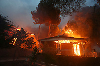Pictured: A house is set alight by the forest fire in Neos Voutzas area, Greece. Monday 23 July 2018<br /> Re: Deaths caused by wild forest fires throughout Greece.