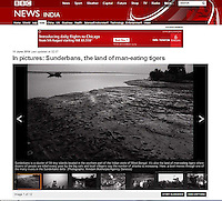 Sunderbans in BBC