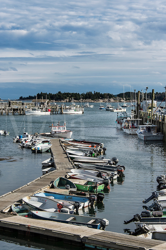 Fishing boats docked in harbor, Stonington, Deer Isle, Maine, USA.
