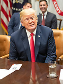 United States President Donald J. Trump announces a grant for drug-free communities support program in the Roosevelt Room of the White House in Washington, DC on Wednesday, August 29, 2018.  Following his remarks the President took a few questions from the press.<br /> Credit: Ron Sachs / CNP