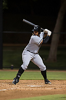 AZL White Sox designated hitter Harvin Mendoza (20) at bat during an Arizona League game against the AZL Dodgers at Camelback Ranch on July 7, 2018 in Glendale, Arizona. The AZL Dodgers defeated the AZL White Sox by a score of 10-5. (Zachary Lucy/Four Seam Images)