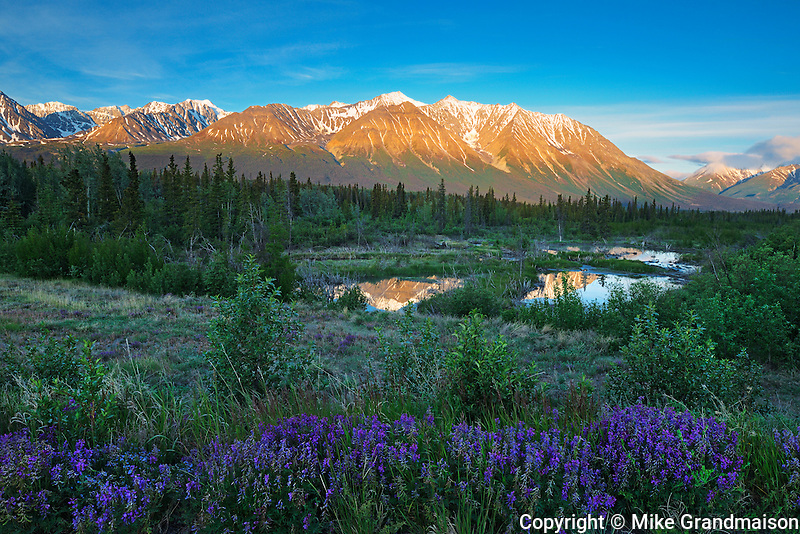 St. Elias Mountains, a subgroup of the Pacific Coast Ranges at sunrise<br /> Kluane National Park<br /> Yukon<br /> Canada