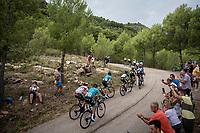 lead group up the steepest part of the brutal Mas de la Costa: the final climb towards the finish<br /> <br /> Stage 7: Onda to Mas de la Costa (183km)<br /> La Vuelta 2019<br /> <br /> ©kramon