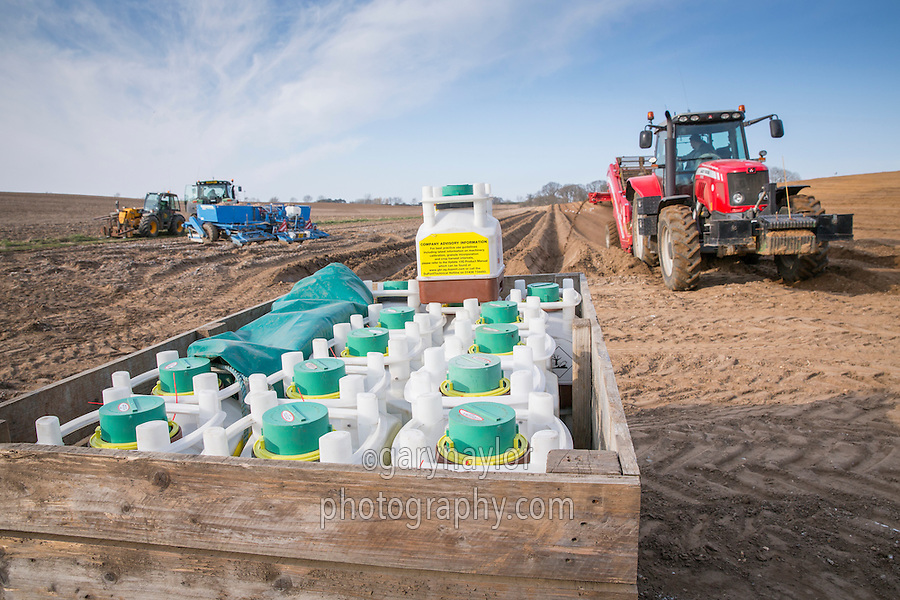 Vydate 10G containers on the potato field headland at planting