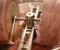 Olive oil processing with stone crusher; McEvoy Olive Ranch,