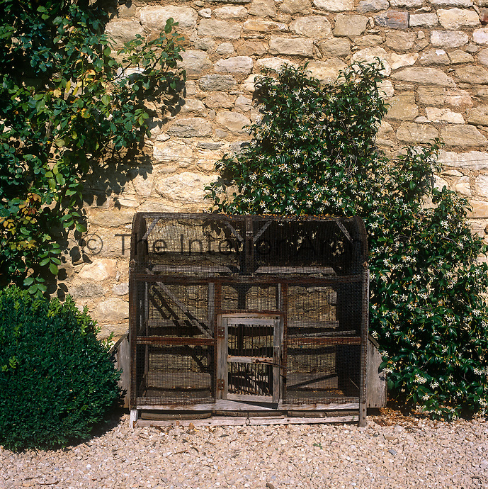 A small animal cage stands against a rough stone wall with climbing plants around it.