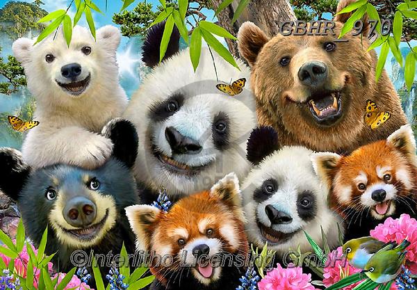 Howard, SELFIES, paintings+++++,GBHR970,#selfies#, EVERYDAY ,panda,pandas ,puzzle,puzzles