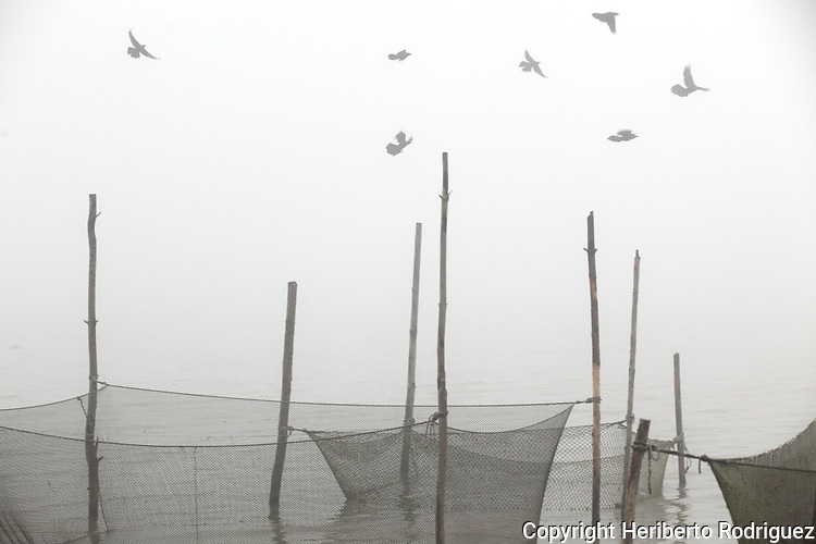 Birds fly over a fish trap under a foggy day in the dam of the Tecojocotal in Acaxochitlan, in the northern state of Hidalgo. Photo by Heriberto Rodriguez