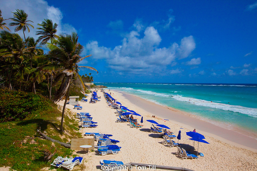 Crane Beach,  Barbados, Caribbean Sea, Atlantic Ocean,  Lesser Antilles, Rated one of the world's most beautiful beaches