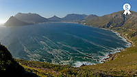 South Africa, South Western Cape, Hout Bay, elevated view (wide angle lens) (Licence this image exclusively with Getty: http://www.gettyimages.com/detail/sb10061763e-001 )