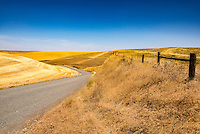 Fences are rare in the Palouse. Wheat is planted to the very edge of the arable land and fences obstruct the combine harvesters so they only occur when land either is or has been used for livestock - at least some of the time.