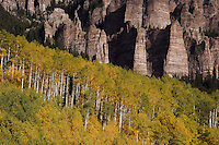 Rockformation and Aspen trees with fall colors, Uncompahgre National Forest, Colorado, USA, September 2007