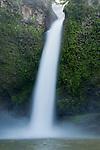 Nandroya Falls - Wooroonooran National Park