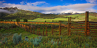 Yellowstone National Park, WY<br /> Summer morning sun on fence line at Lamar Buffalo Ranch, snow on distant Specimen Ridge