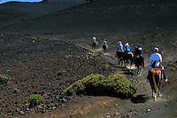 Horseback riders enjoy the backcountry wilderness in the crater of HALEAKALA NATIONAL PARK on Maui in Hawaii