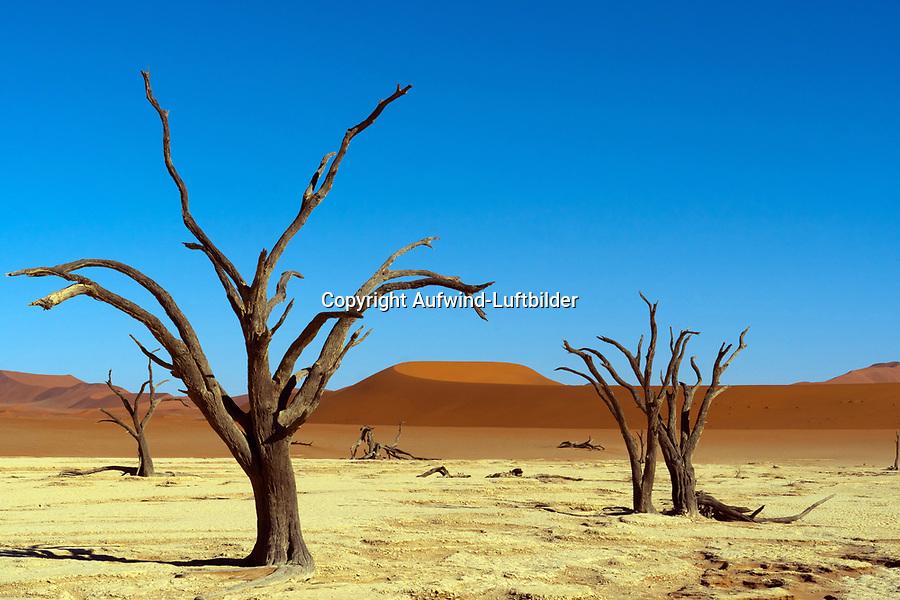 Dead Vlei: NAMIBIA, AFRIKA, 18.12.2019: Dead Vlei