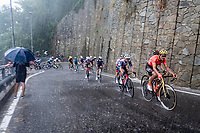 Greg Van Avermaet (BEL/CCC) racing in torrential rains up Il Piccolo Stelvio at <br /> Grande Trittico Lombardo 2020 (1.Pro/ITA)<br /> 1 day race from Legnano to Varese (200km)
